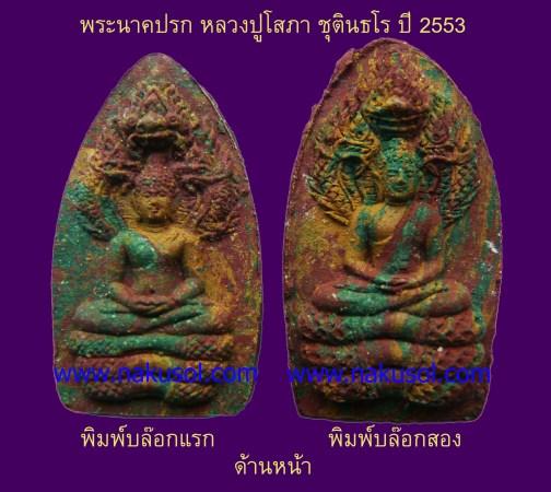 พระนาคปรก หลวงปู่โสภา ชุตินธโร รุ่นปี 2553
